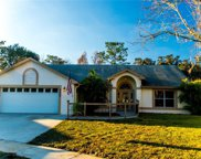 8603 Running Bear Court, Orlando image