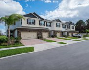 15128 Sunrise Grove Court, Winter Garden image