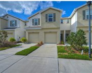 4909 White Sanderling Court, Tampa image