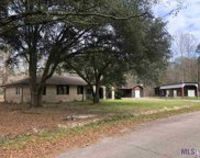 14145 Stacey Ln, Livingston image