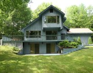 163 Old Danzer  Road, Livingston Manor image