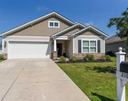 230 Sea Turtle Dr., Myrtle Beach image