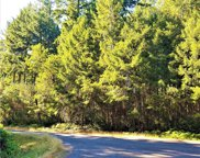 11515 Greenwood Drive, Anderson Island image