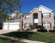 324 Palomino Hill, Chesterfield image
