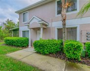 18117 Paradise Point Drive, Tampa image