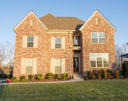 1074 Cantwell Pl, Spring Hill image