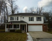 7314 Wood Duck  Court, Indianapolis image
