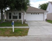 17339 Blooming Fields Drive, Land O Lakes image