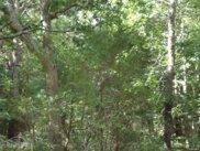 Woodland, Manorville image