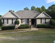 260 Turkey Trail Rd, Odenville image
