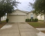 7830 Carriage Pointe Drive, Gibsonton image