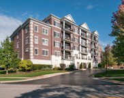 446 Mcdaniels Circle Unit 304, Clarendon Hills image