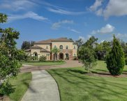 14802 Donald Ross Court, Tampa image