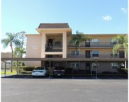 1370 Heather Ridge Boulevard Unit 301, Dunedin image