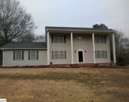 703 Pineapple Pointe, Greenville image