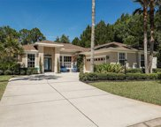 11111 Water Lily Way, Lakewood Ranch image
