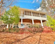 641 Sweetwater Point Dr, Wedowee image