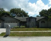 10233 Mulberry Way, Seminole image