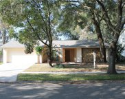 16608 Vallely Drive, Tampa image