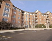 125 Buffalo Grove Road Unit 409, Buffalo Grove image