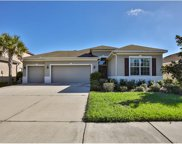 11110 Foster Carriage Road, Lithia image
