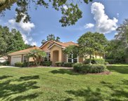 17820 Green Willow Drive, Tampa image
