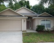 12517 Sparkleberry Road, Tampa image