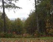 LT 20 Loftis Mountain Rd, Blairsville image