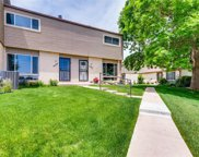 4217 West Ponds Circle, Littleton image