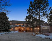 91 Falcon Hills Drive, Highlands Ranch image