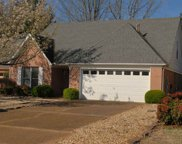 373 Scarlet Tanager, Collierville image