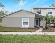 14711 Pine Glen Circle, Lutz image