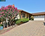 3519 Wild Flower Way, Concord image