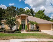806 Silver Rose Court, Lake Mary image