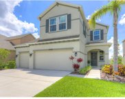 13333 Palmera Vista Drive, Riverview image