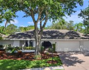 14306 Kellingrew Place, Tampa image
