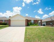 14033 Silkwood Drive, Fort Worth image