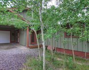 30669 Kings Valley Drive, Conifer image