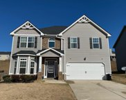 3018 Walking View Court, Graniteville image