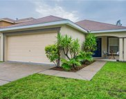 5434 Turtle Crossing Loop, Tampa image