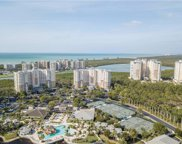 325 Dunes Blvd Unit 603, Naples image