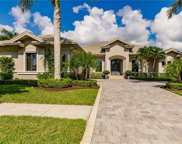 11943 Hedgestone Ct, Naples image