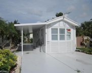 17002 Puppy Dog DR, Fort Myers image