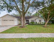 11501 E Queensway Drive, Temple Terrace image