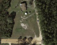 9015 Tree Farm Rd, Panama City image