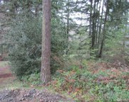4606 W Tapps Dr E, Lake Tapps image
