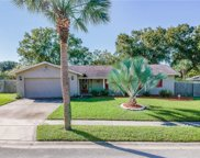 113 Shepherd Trail, Longwood image
