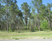 Lot 62 Pony Pond Rd. Road, Dade City image