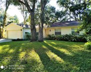 284 Brandy Hills Drive, Port Orange image