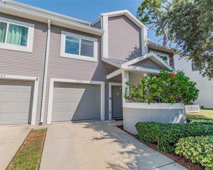 9603 Tara Cay Court Unit 55, Seminole